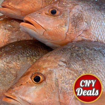 CNY DEALS! Red Snappers 红鸡 (refer description)