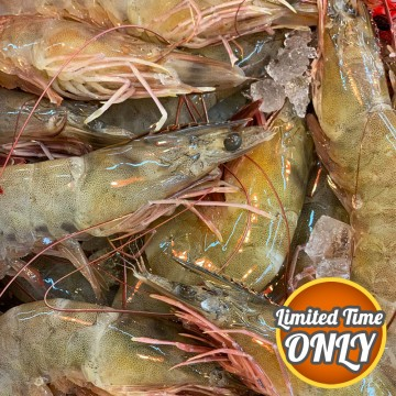 PROMOTION! South America Prawns 南美洲虾 1kg (Approx 30-35pcs/kg)