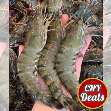 CNY DEALS! Tiger Prawns 老虎虾 1kg (Approx 20-25pcs/kg)